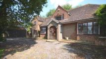 Detached property for sale in Priory Lane, Warfield...