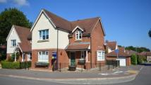 Detached house for sale in Greystock Road, Warfield
