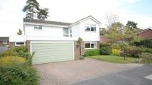 Detached house in Quintilis, Bracknell...