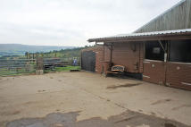 Equestrian Facility home in Equestrian Business...