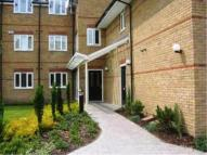 2 bed Flat to rent in Oriel House ...