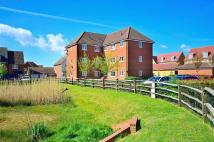 Apartment to rent in HEDGERS WAY, Ashford...