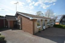 Semi-Detached Bungalow for sale in Poplar Close...