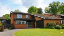Detached property in Kelsey Grove, Yateley...