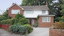 4 bed Detached house for sale in Jennys Walk, Yateley...