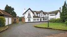 7 bed semi detached home in Potley Hill Road...