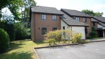 Flat for sale in Campbell Close, Yateley...