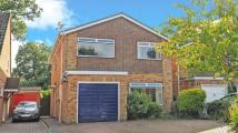 4 bed Detached house in Mistletoe Road, Yateley...