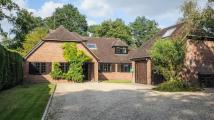 4 bedroom Detached home for sale in Lower Common, Eversley...