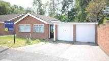 Bungalow for sale in Balliol Way...