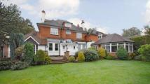 5 bed Detached home in Thibet Road, Sandhurst...