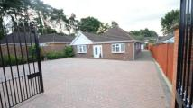 Bungalow in Yeovil Road, Owlsmoor...