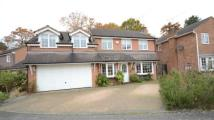 Detached house for sale in Abingdon Road, Sandhurst...