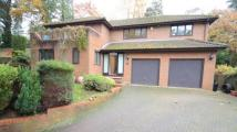 Detached property for sale in Scotland Hill, Sandhurst...