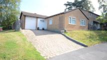 3 bed Bungalow in Wadham, Claremont Wood...
