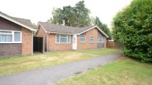 3 bed Bungalow in Balliol Way...