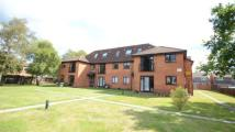 Flat for sale in Elm Court, Durham Road...