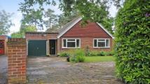 4 bed Bungalow for sale in Wellington Road...