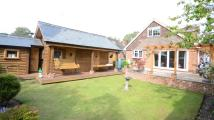 4 bed Bungalow for sale in Branksome Hill Road...