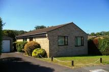 2 bed Detached Bungalow for sale in Buckland Gardens, Ryde...