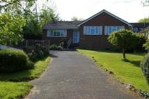 3 bedroom Detached Bungalow for sale in Gully Road, Seaview...