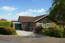 Binstead Lodge Road Detached Bungalow for sale