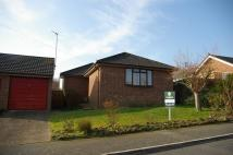 Detached Bungalow for sale in Birch Gardens, Binstead...