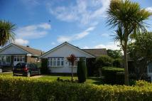 3 bedroom Detached Bungalow in Wychwood Close, Seaview...