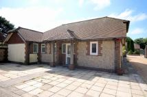 Detached Bungalow to rent in Station Road, Rustington
