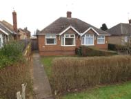 Bungalow in Wollaston Road...