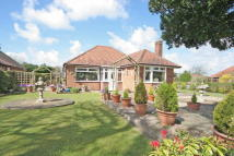 Detached Bungalow for sale in Christleton, Cheshire