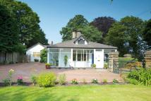 Detached Bungalow for sale in Rossett
