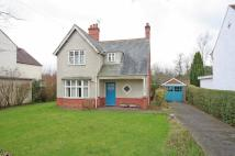3 bed Detached house in Upton Park, Upton