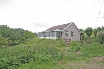 Detached Bungalow for sale in Dark Ark Lane, Manley
