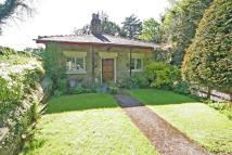 3 bed Detached Bungalow for sale in Minera Road, Ffrith