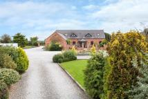Barn Conversion for sale in Heatley Lane, Broomhall...