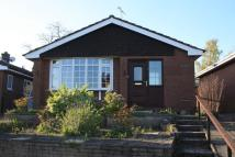 2 bed Detached Bungalow in Broadways, Audlem...