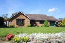 Woore Detached Bungalow for sale