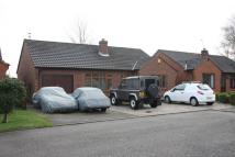 2 bed Detached Bungalow in Schoolfield Close...