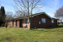 Detached Bungalow for sale in Audlem, Cheshire