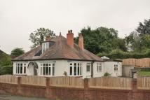 Detached Bungalow for sale in Tarporley Road...