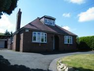 Detached Bungalow in Cemetery Road, Weston