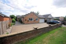 Detached Bungalow for sale in Halton Lane, Wendover...