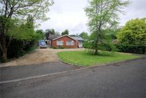 Detached Bungalow for sale in Nash Lee Lane, Wendover...