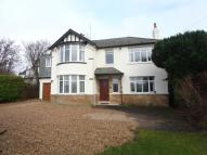 Detached home to rent in WAYSIDE MOUNT, SCARCROFT...