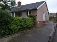 Bungalow to rent in Maes Meurig, Meliden