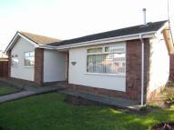 Bungalow to rent in Maes Derwen, Rhuddlan