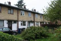 Terraced house to rent in Chapel Walk, NW4, Hendon