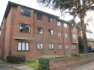 Ashburton Road Flat to rent