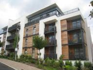 1 bed Flat to rent in Scott Avenue, Putney...